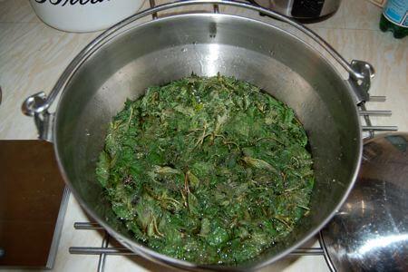 nettle-cordial-recipe-5