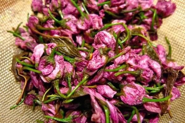 Sakura Recipe