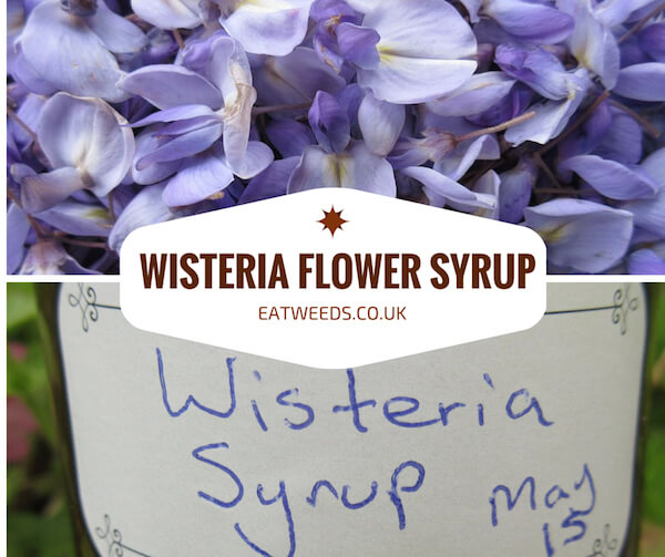 Wisteria Flower Recipe