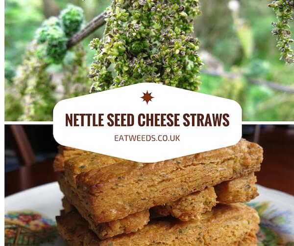 Nettle Seed Cheese Straws Recipe