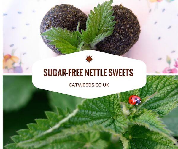 Nettle Sweets Recipe