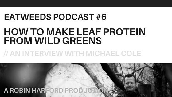 How To Make Leaf Protein