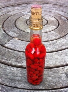 Post image for Rosehip Vinegar