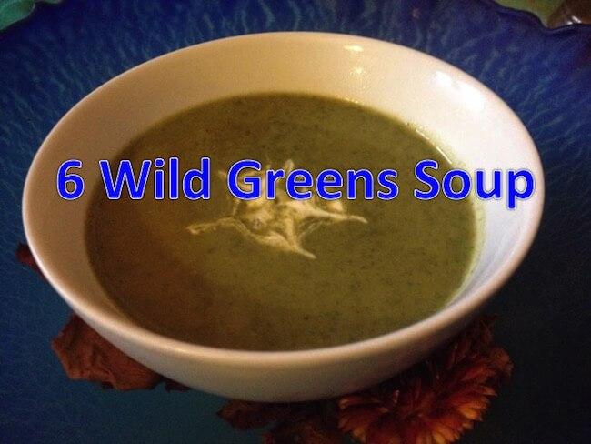 Wild Soup Recipe