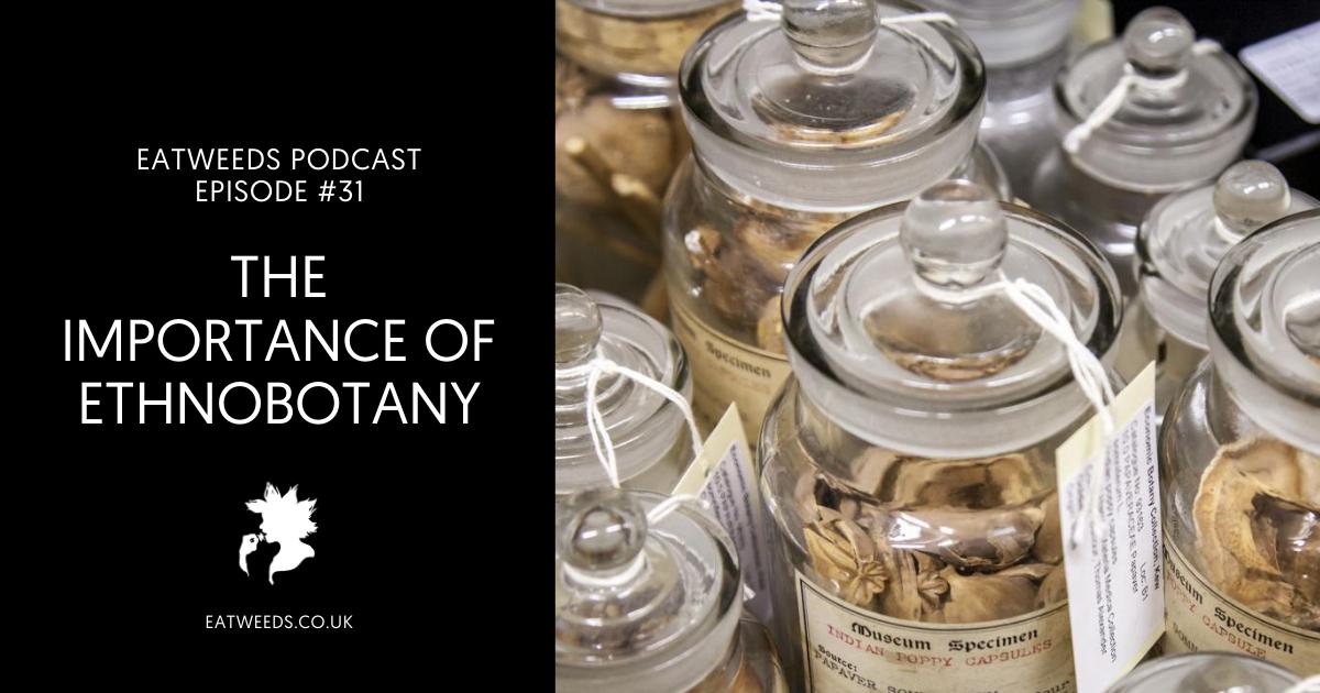 The Importance of Ethnobotany - Interview with Mark Nesbitt from Kew Economic Botany Department