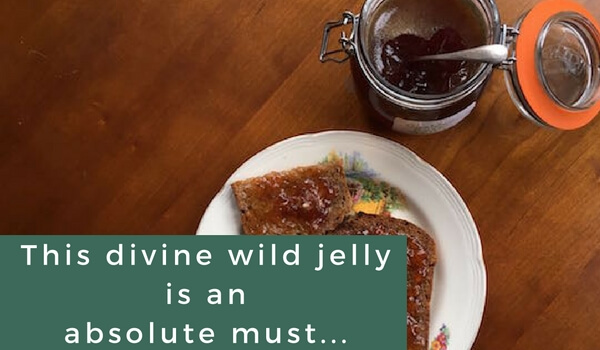 Guelder Rose Jelly Recipe