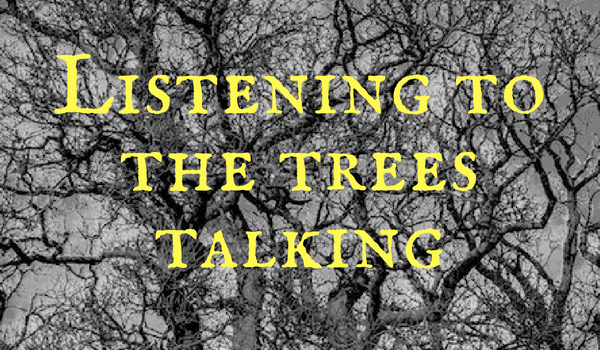 Listening to the trees talking