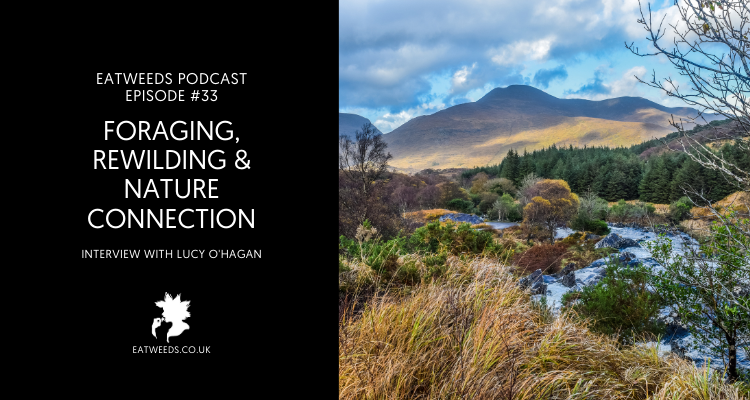 Eatweeds Podcast EP33: Foraging, Rewilding and Nature Connection