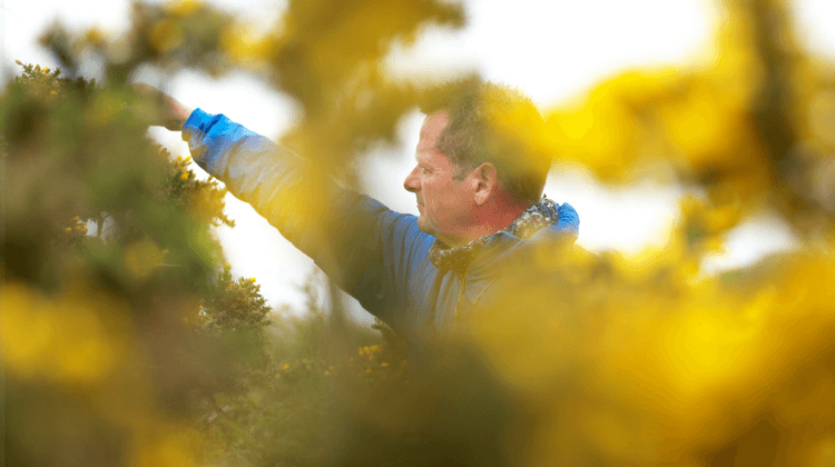 Foraging And Wellbeing
