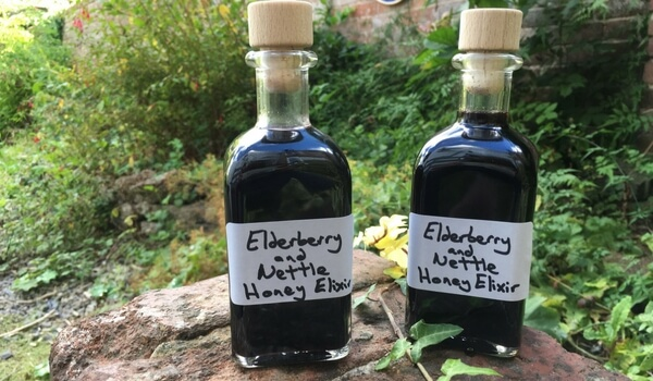 Elderberry & Nettle Honey Elixir