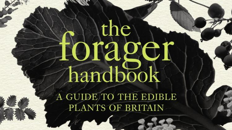 Forager Handbook