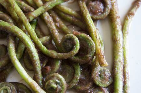 Harts Tongue Fiddlehead Fern Recipe