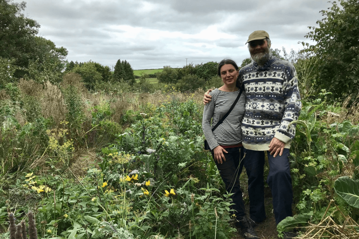 Hilltown Organics, Okehampton, Devon - Eatweeds Podcast