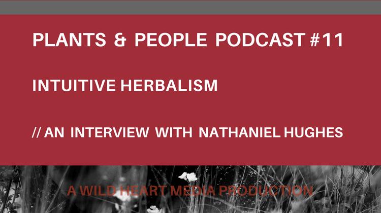 Intuitive Herbalism Nathaniel Hughes