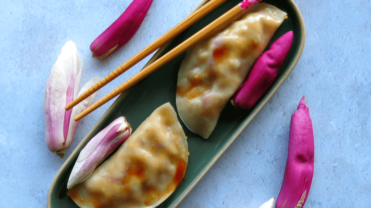Magnolia Tempeh Dumplings