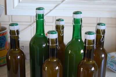 Traditional Stinging Nettle Beer Recipe