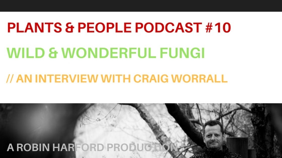 Wild and Wonderful Fungi : An Interview With Craig Worrall