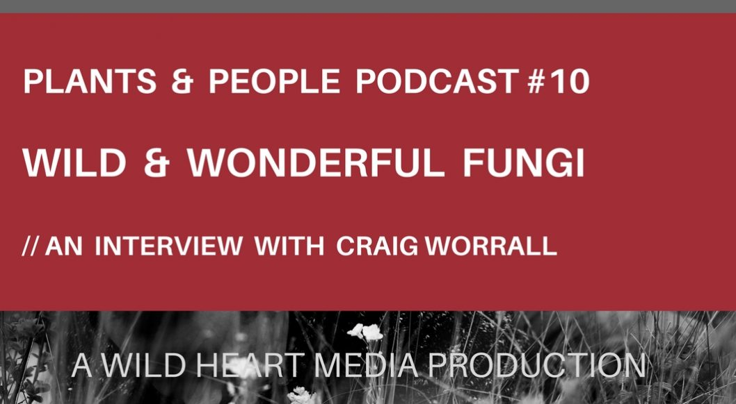 Interview with Craig Worrall