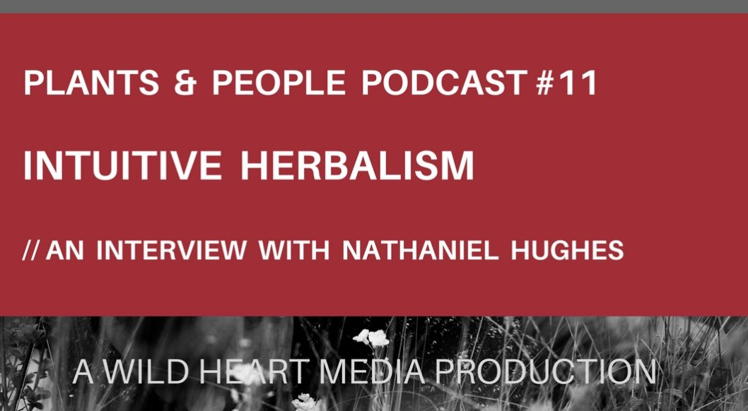 Intuitive Herbalism with Nathaniel Hughes
