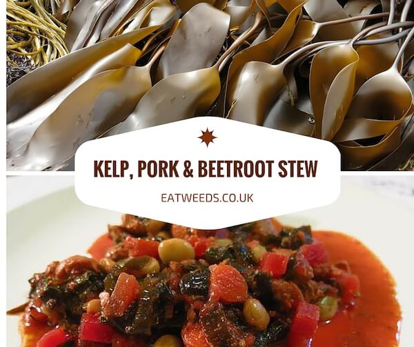 Kelp Recipe