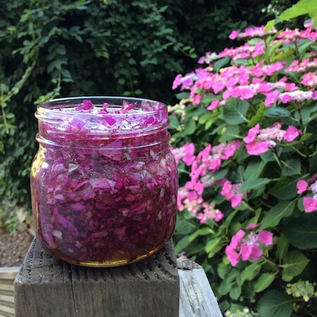 Rose Petal Honey Recipe