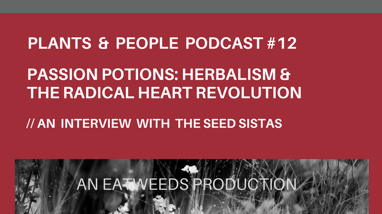 Seed Sistas Passion Potions