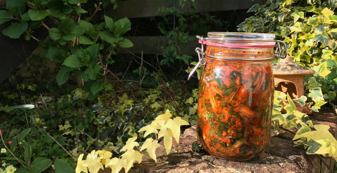 Wild Garlic Kimchi Recipe