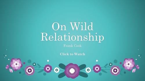 wildrelationship